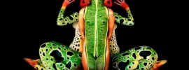 52 Best Body Paint Images and Ideas