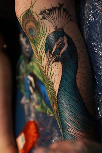 Detailed Peacock Tattoo