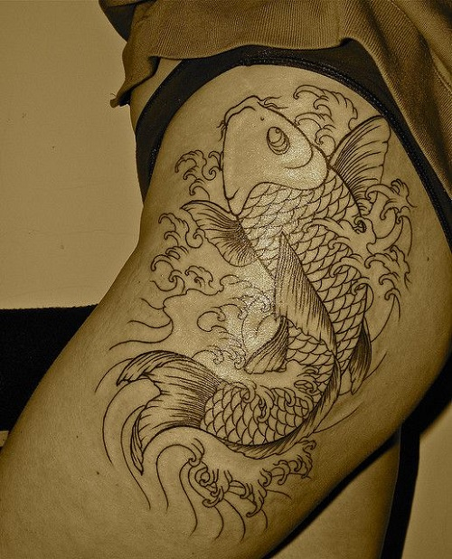 Koi Fish Meaning Overcoming Life Struggle