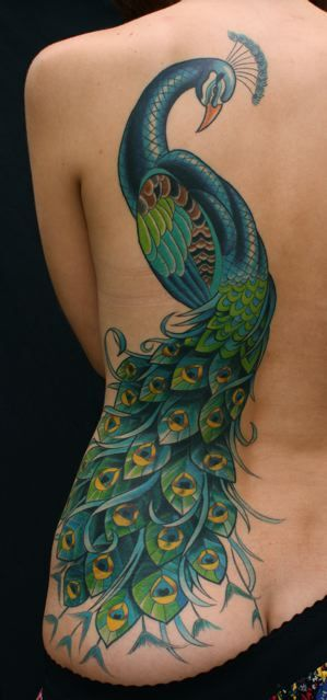 Lovely Peacock Tattoo