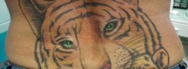 Tiger Tattoo Piercing