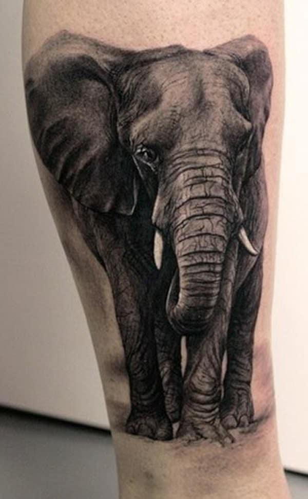 Elephant Symbolism