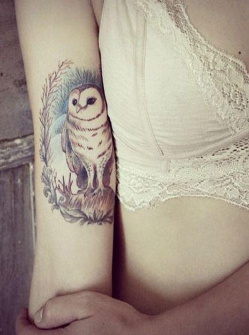 Owl on Top of Deer Tattoo