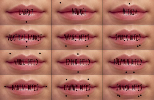 14 lip piercing types explained jewelry inspiration guide - Lippenpiercing ring ...