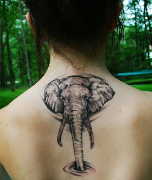 Elephant Butterfly Tattoo