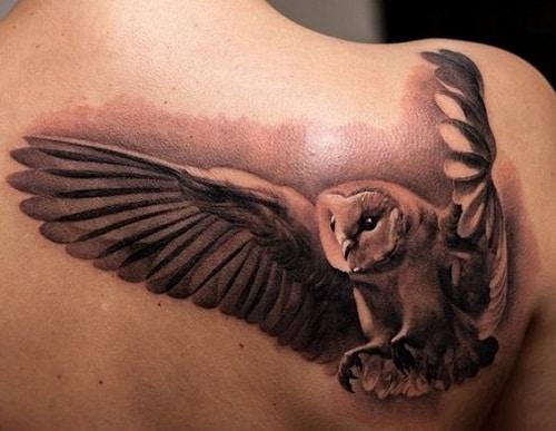 3D Flying Owl