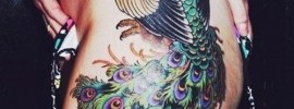 61 Beautiful Peacock Tattoo Pictures and Designs