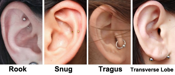 Kinds Of Ear Piercings